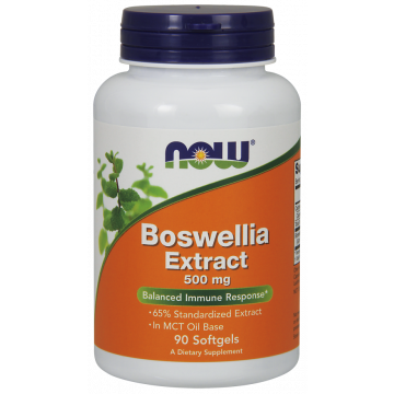 Boswellia Extract, 500 mg